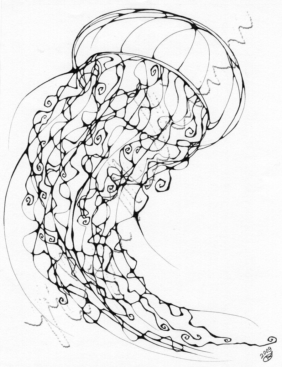 900x1172 Inkblot Jellyfish By Chimeradreams
