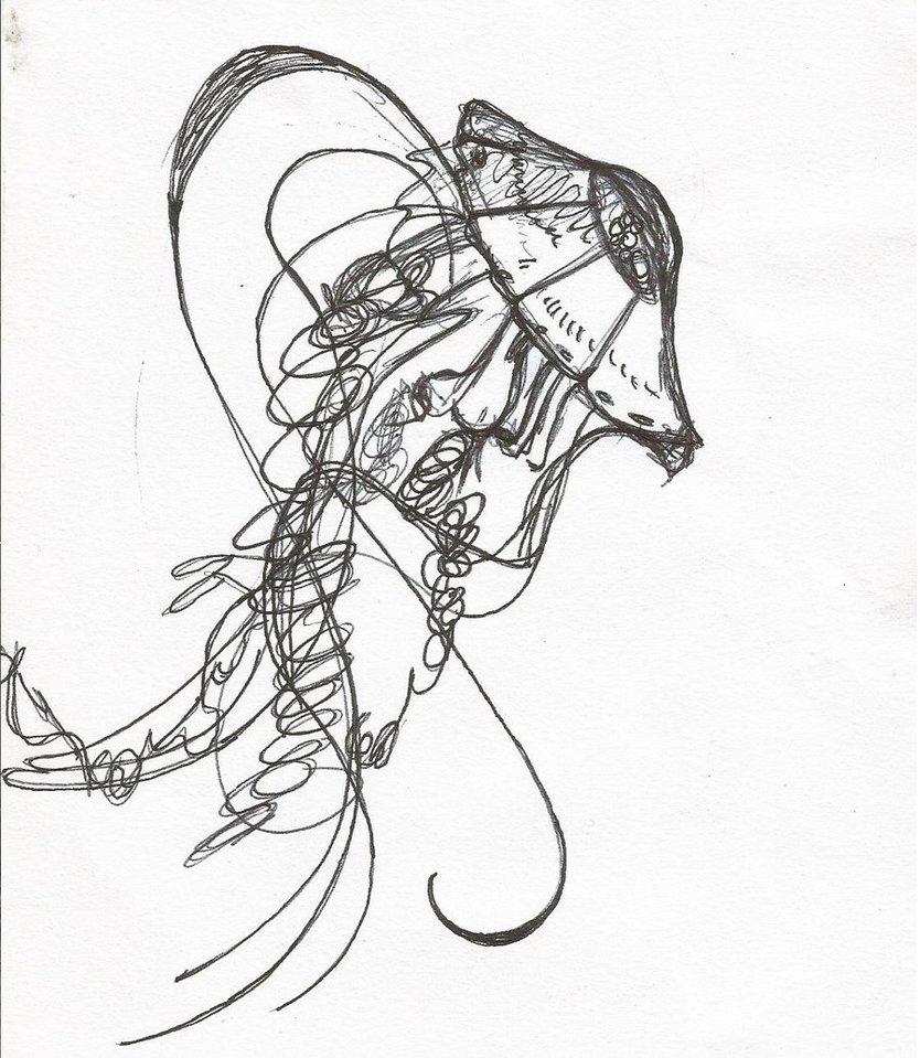 834x959 Jellyfish Pen Drawing By Navyvelveteen