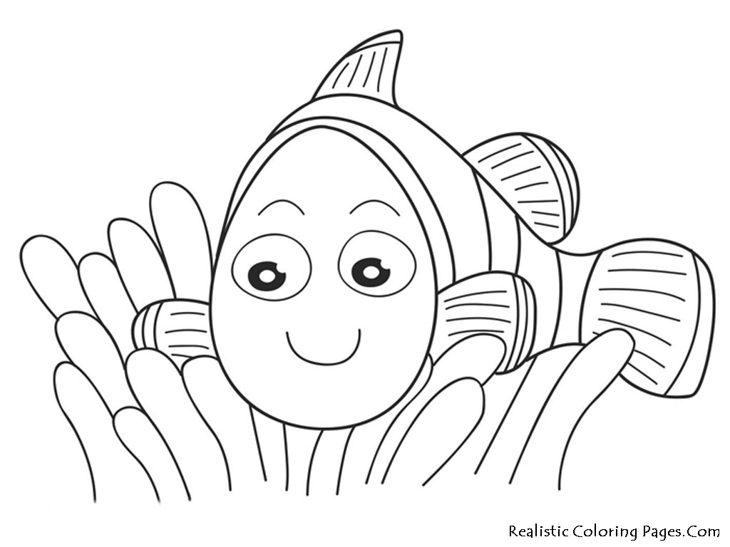 1024x768 Nemo Fish Coloring Realistic Nemo Kids Pages Printable Adult