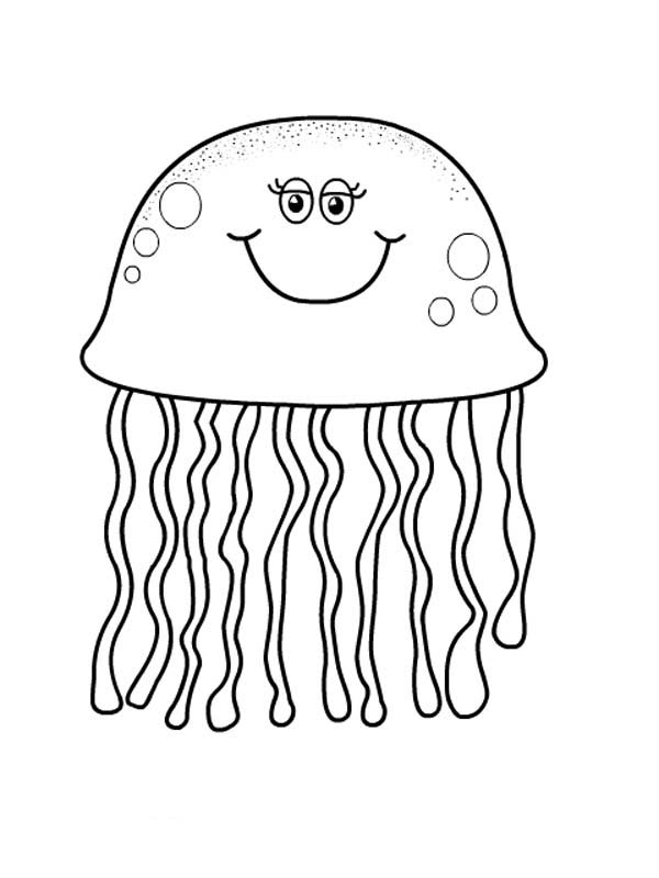 box jellyfish coloring pages | Realistic Jellyfish Drawing at GetDrawings.com | Free for ...