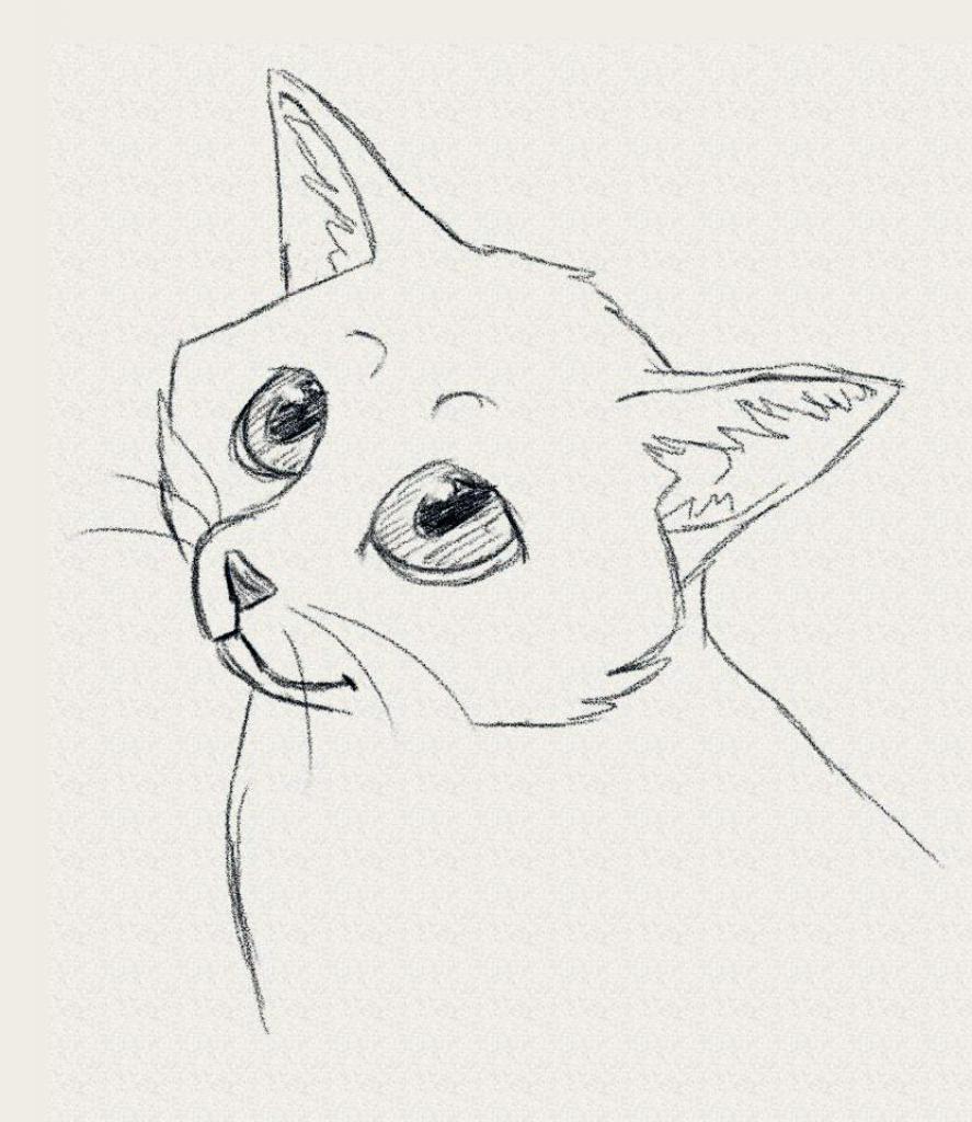 887x1024 Cute Kitten Drawing 7. How To Draw A Realistic Kitten, Cute Kitten