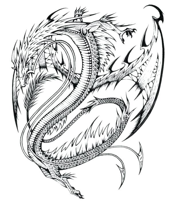 600x713 Realistic Lion Coloring Pages