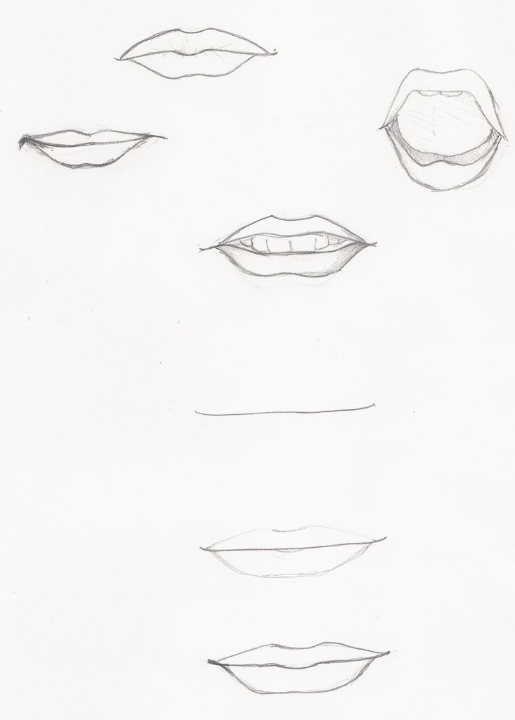 Realistic Lips Drawing At Getdrawings Com Free For Personal Use