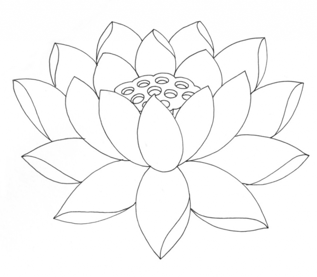 how to use lotus flower for skin