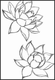 226x327 Pretty Flower Sketches Snvcn Inspirational 40 Beautiful Flower