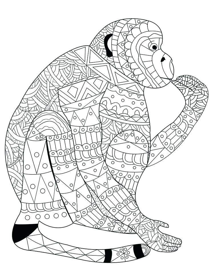 736x981 Lemur Animal Coloring Pages Realistic Monkey Coloring Page
