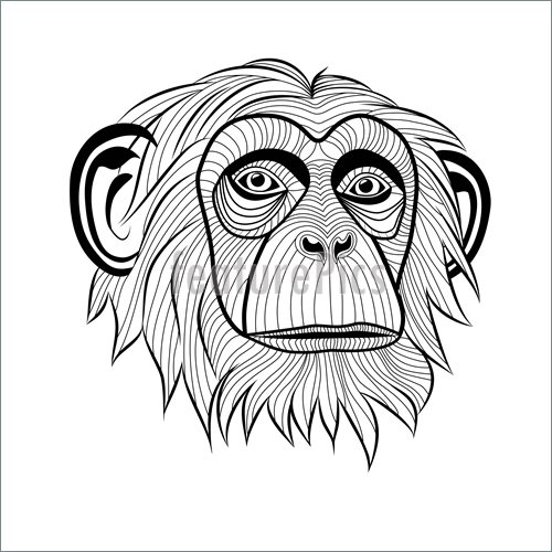 500x500 Monkeys And Apes Monkey Chimpanzee Head