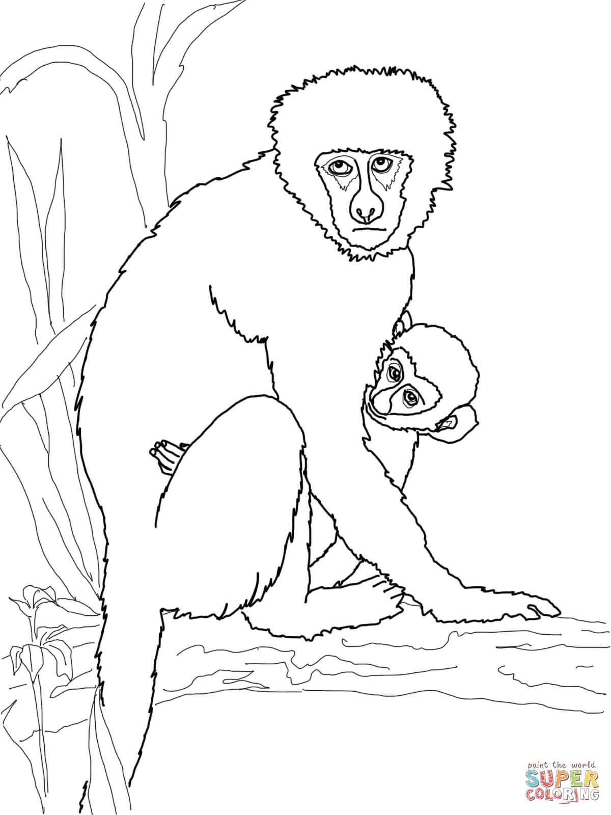 1200x1600 Vervet Monkey With Its Baby Coloring Page Free Printable