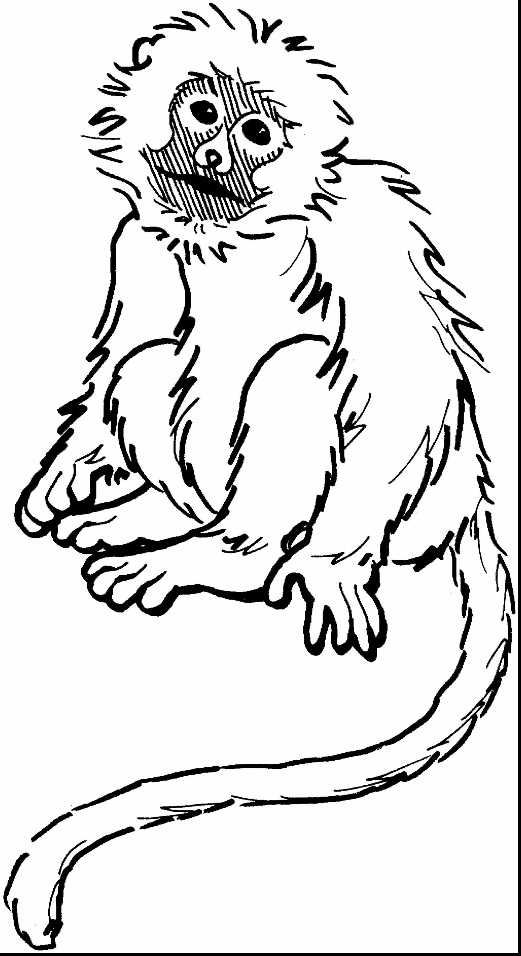 1661x3048 Spider Monkey Coloring Page Coloring Page For Kids