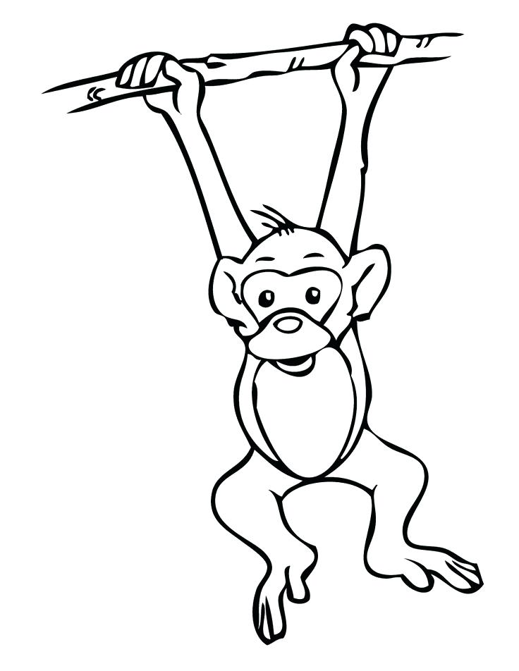736x952 Delightful Coloring Pages Of Monkeys Print Realistic Monkey Home S