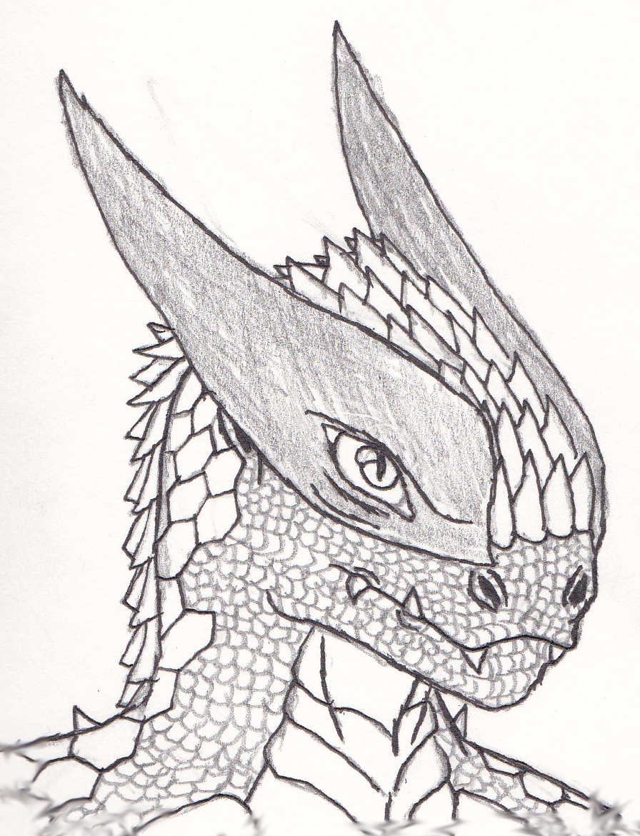 896x1171 Realistic Zygrian Sketch By Shade743