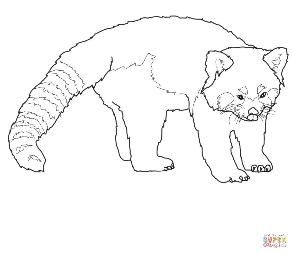1200x1040 Cute Red Panda Coloring Page Free Printable Pages