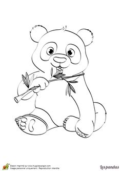 Realistic Panda Drawing at GetDrawings