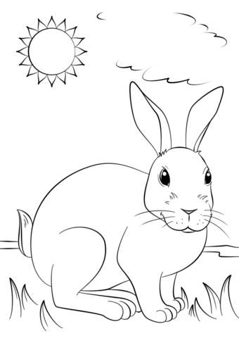340x480 Cute Rabbit Coloring Page Free Printable Coloring Pages