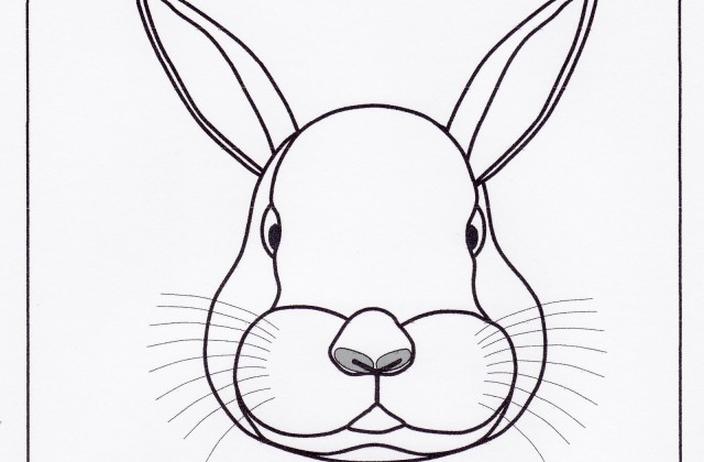 640x420 Tag For Drawing Rabbit Pics Photos Learn How To Draw A Rabbit