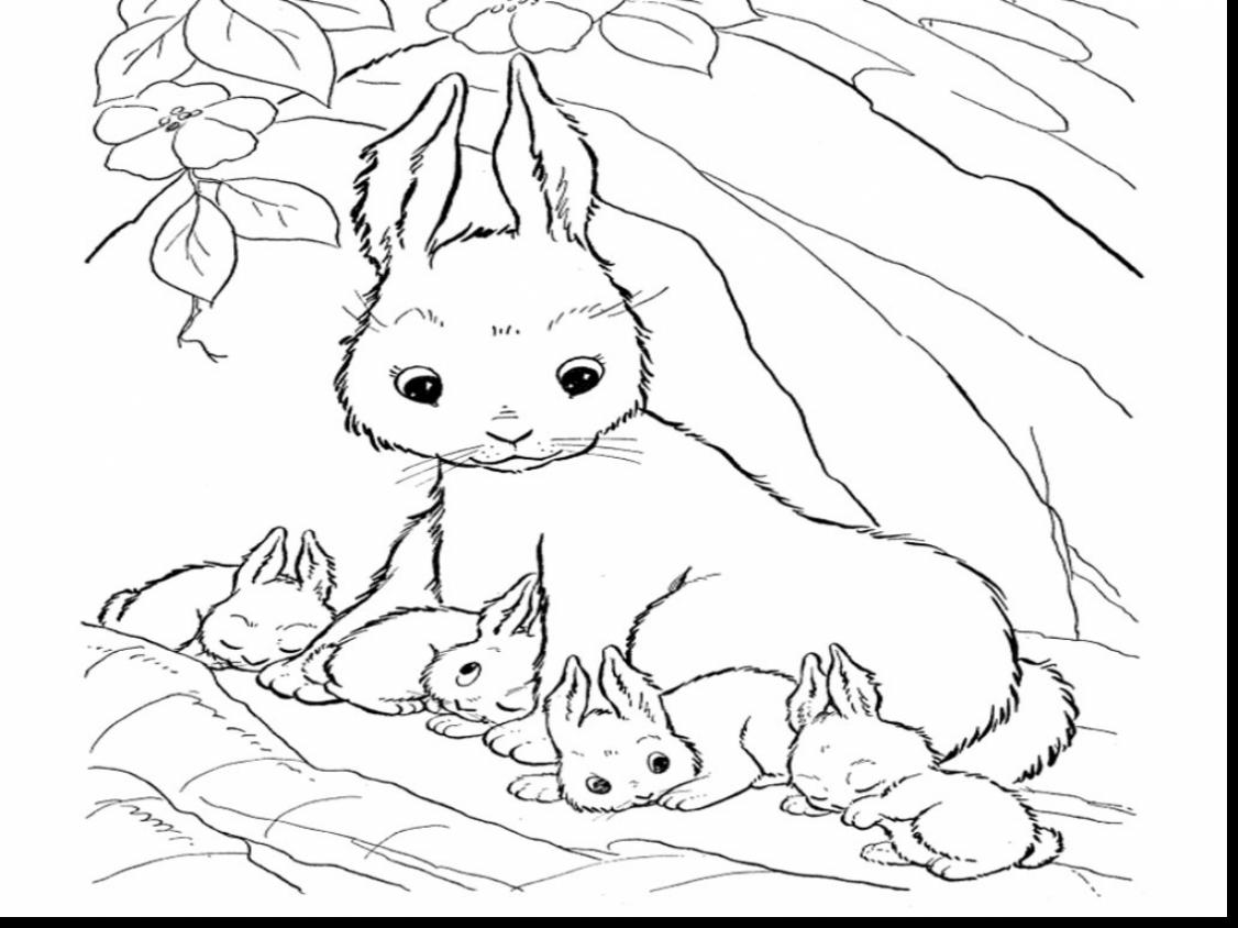 1126x844 Incredible Realistic Rabbit Coloring Pages With Bunny Coloring