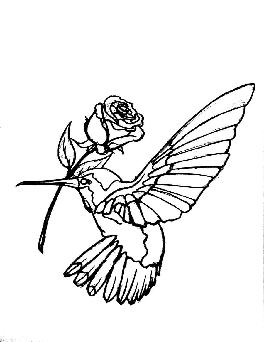 900x1165 Hummingbird Tattoo Realistic Rose Outline Design