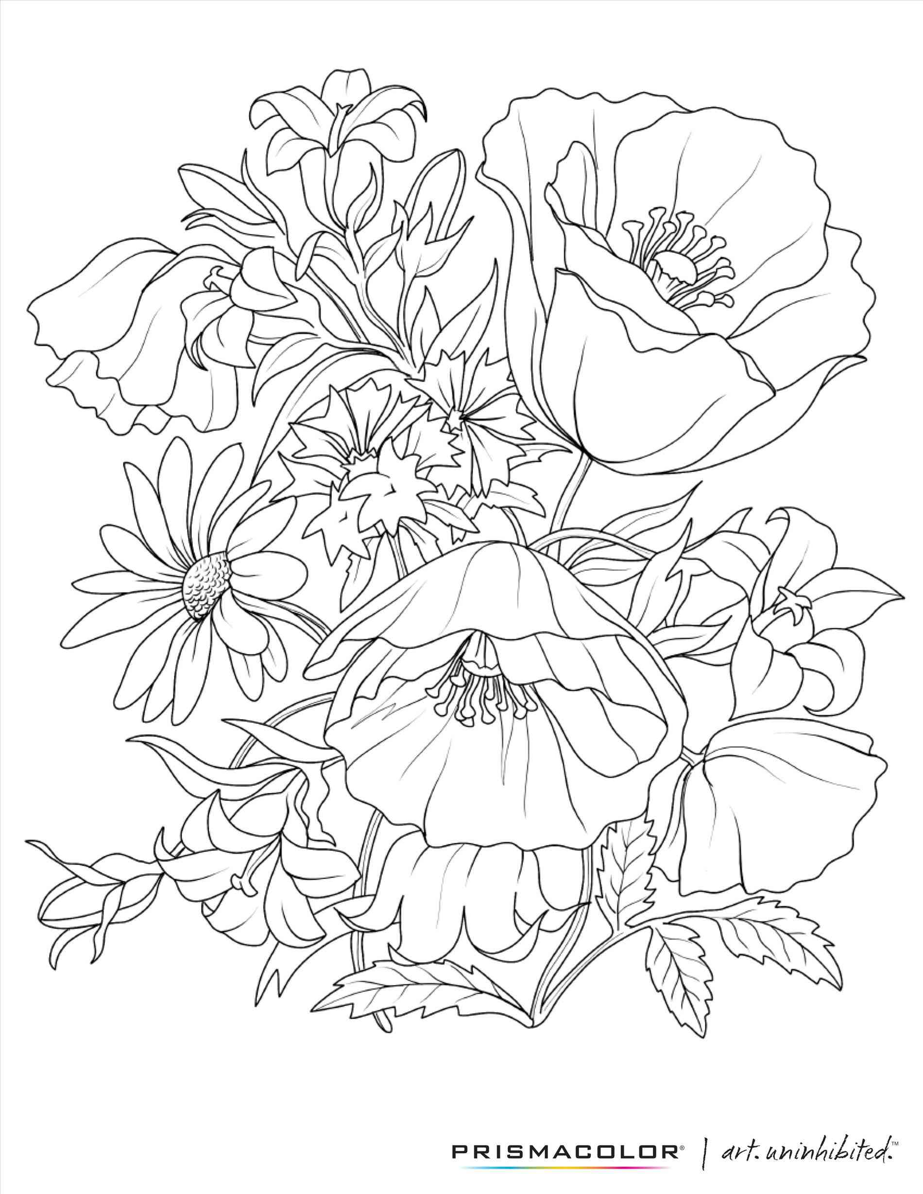 1900x2458 Realistic Rose Line Drawing Freespywarefixescom