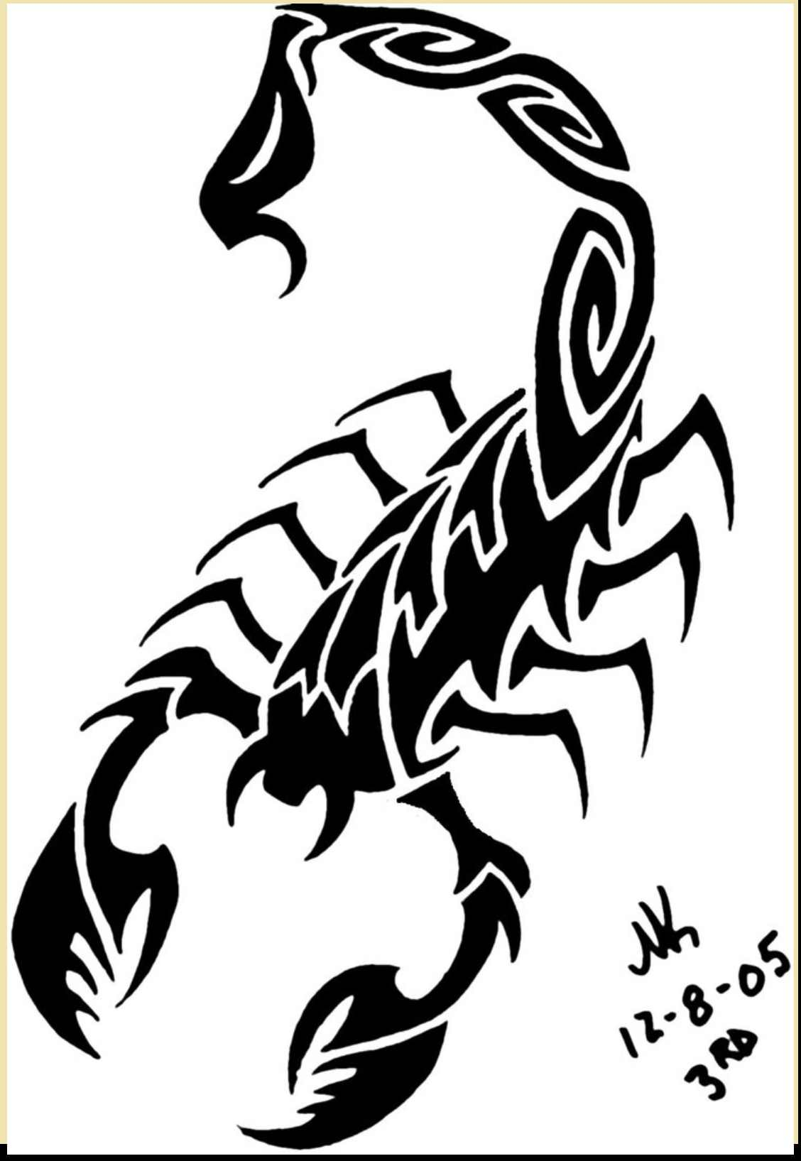 Realistic Scorpion Drawing at GetDrawings com | Free for