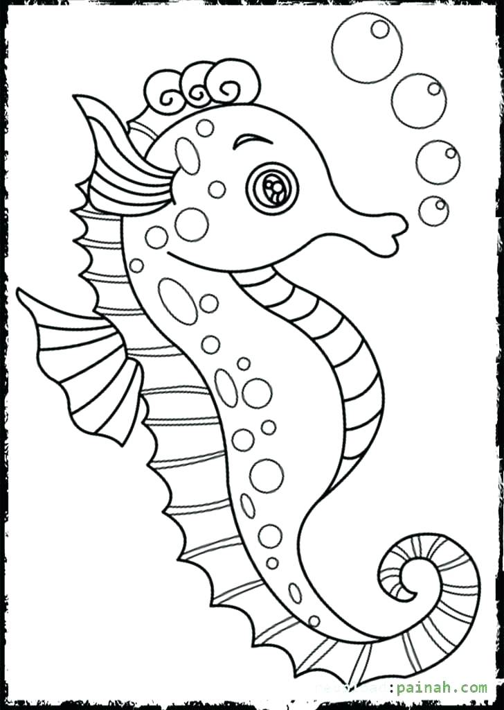 The best free Seahorse drawing images. Download from 598 ...