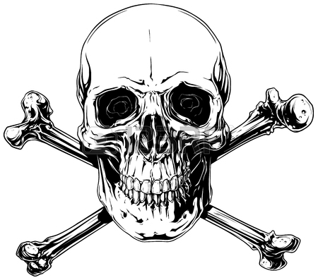 450x397 Graphic Realistic Human Skull With Crossed Bones Royalty Free