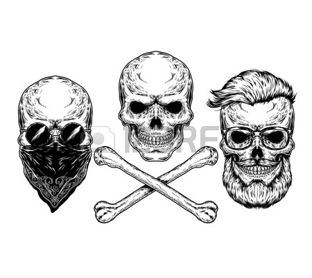 450x400 Human Skull With Hipster Beard, Wearing Aviator Sunglasses
