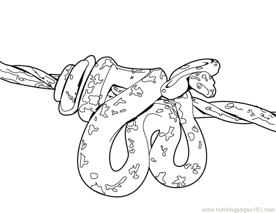 960x741 Snake Coloring Page Snake Coloring Pages Snake Coloring Pages