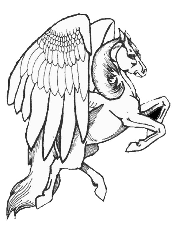 600x799 Fancy Realistic Wolf Coloring Pages Like Different Article