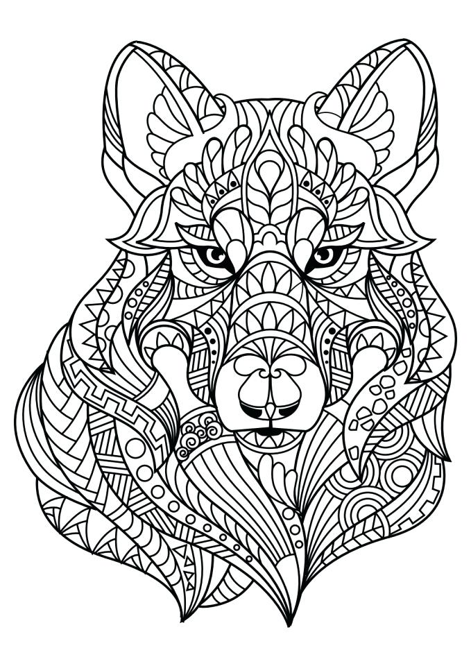 679x960 Grey Wolf Coloring Pages Latest Realistic Wolf Coloring Page Gray