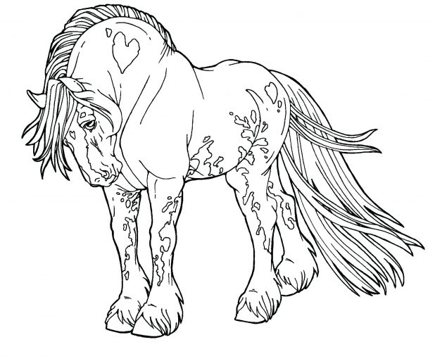 618x513 Gypsy Drawings Free Lines Drum Horse By Digital Art Coloring