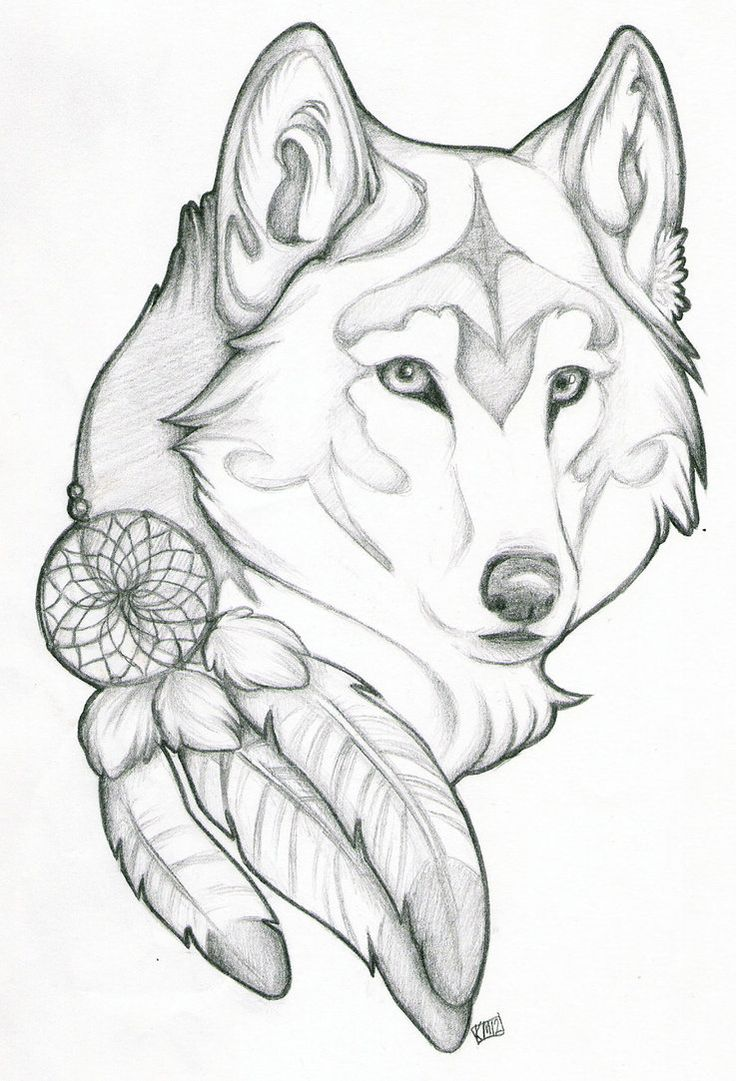 736x1081 Pin By Breanne Daniel On Tattoos And Piercings Wolf