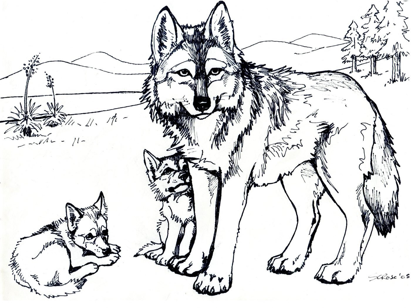 1400x1050 Tattoo Wolf Krissy Tattoos Coloring Pages For Adults Free