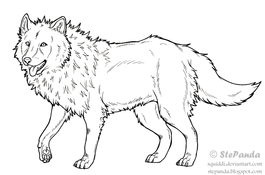 900x596 Free Lineart Adult Wolf By Stepandy On Design