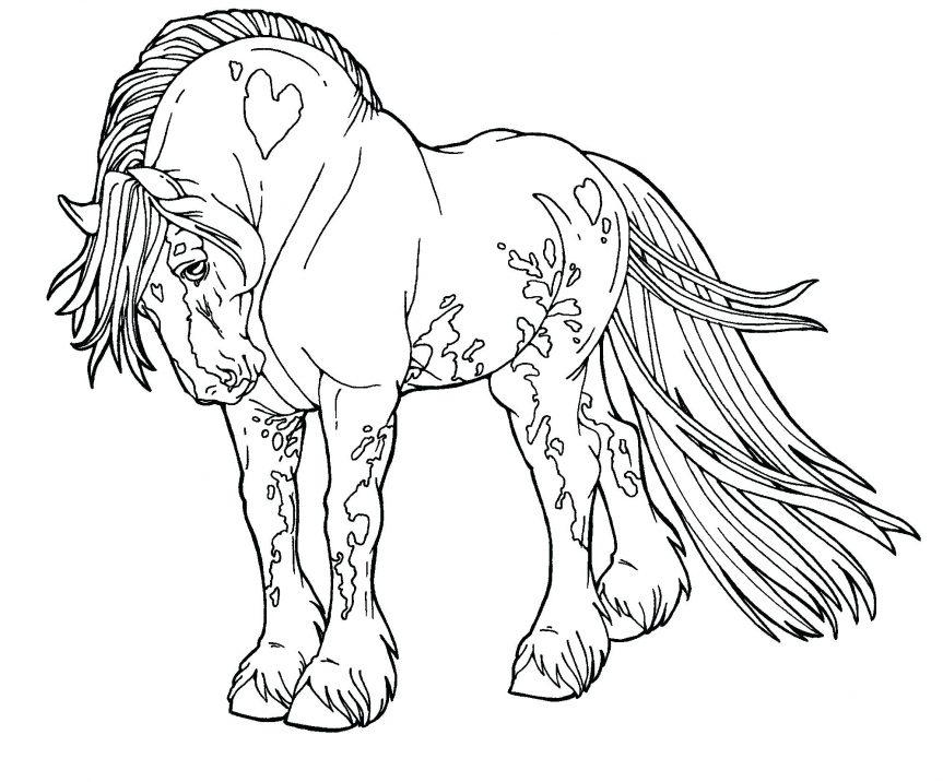 863x716 Gypsy Drawings Free Lines Drum Horse By Digital Art Coloring