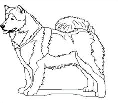 236x207 Realistic Wolf Coloring Pages Story Stone Ideas