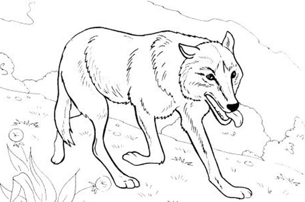 1000x662 Wolf Coloring Pages, Teach Your Children To Be Brave Allmadecine