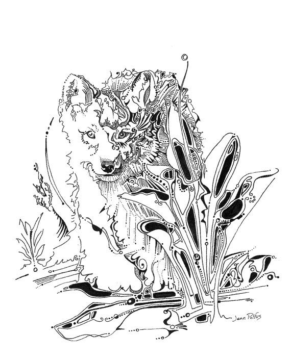 570x706 84 Best Wolf Drawings Images On Wolf Drawings, Wolf