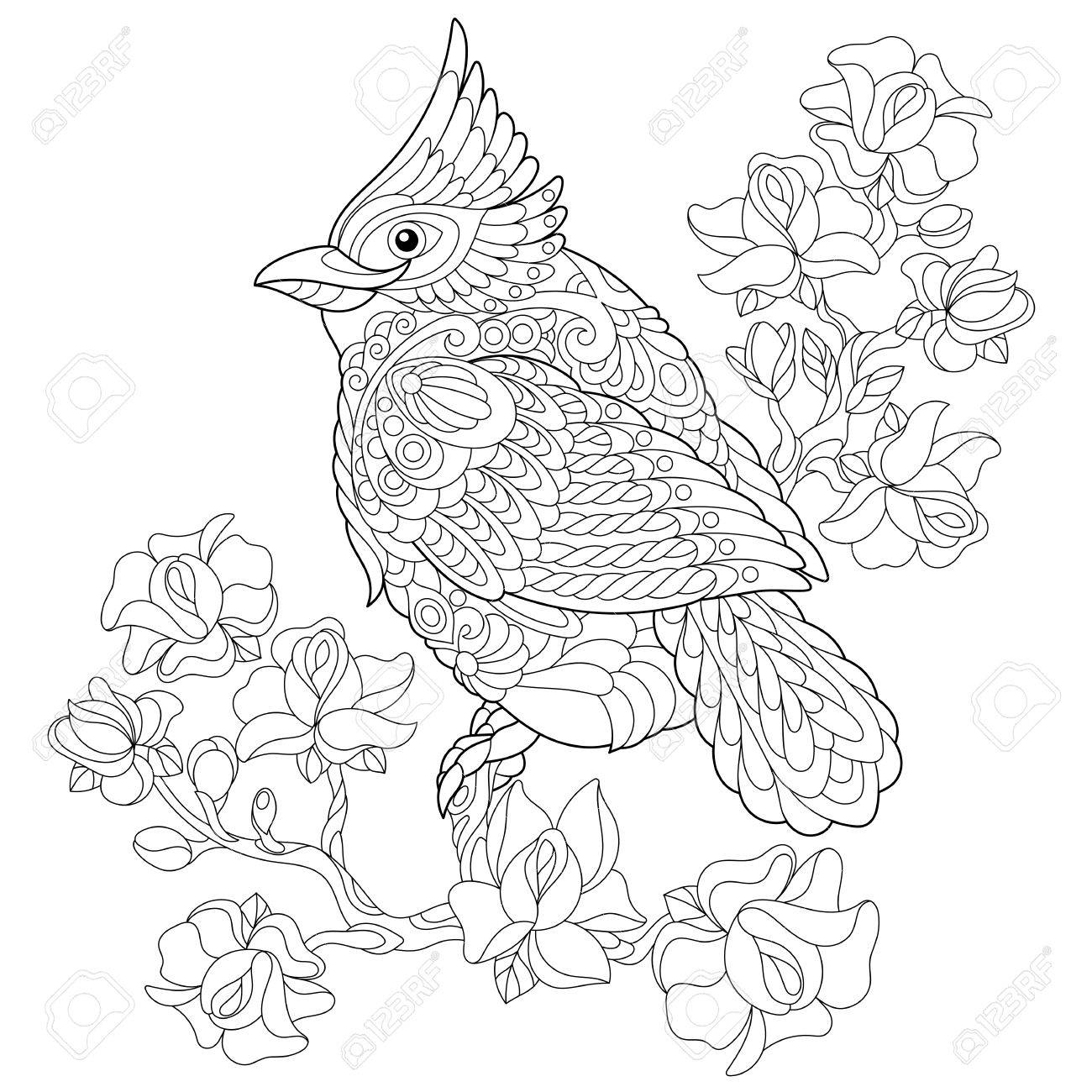 1300x1300 Coloring Book Page Of Northern Red Cardinal Bird Sitting On Cherry