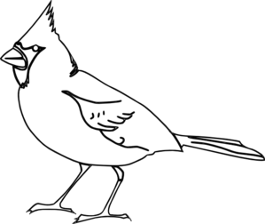 299x252 Red Bird Clipart Black And White
