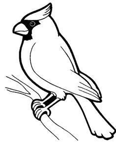 236x295 Red Cardinal Bird Coloring Page Cardinal Bird Stencils Outlines