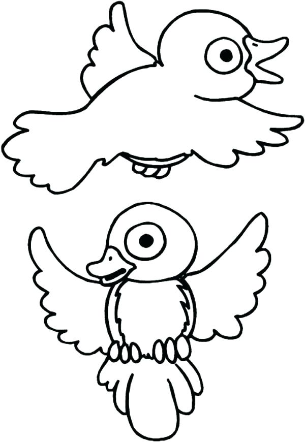 600x870 Robin Bird Coloring Pages Bird Coloring Pages Plus Drawing Robin