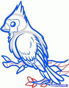236x301 How To Draw A Red Bird, Red Cardinal Bird Step By Step Drawing
