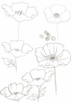 236x333 Bobbie Print Floral Drawings Tattoos Floral