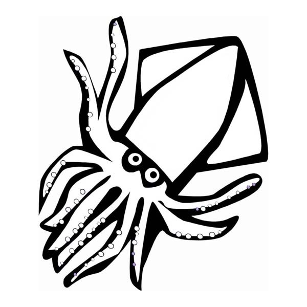 600x600 Red Devil Squid Sea Animals Coloring Page