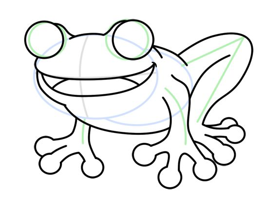 Red Eyed Tree Frog Drawing