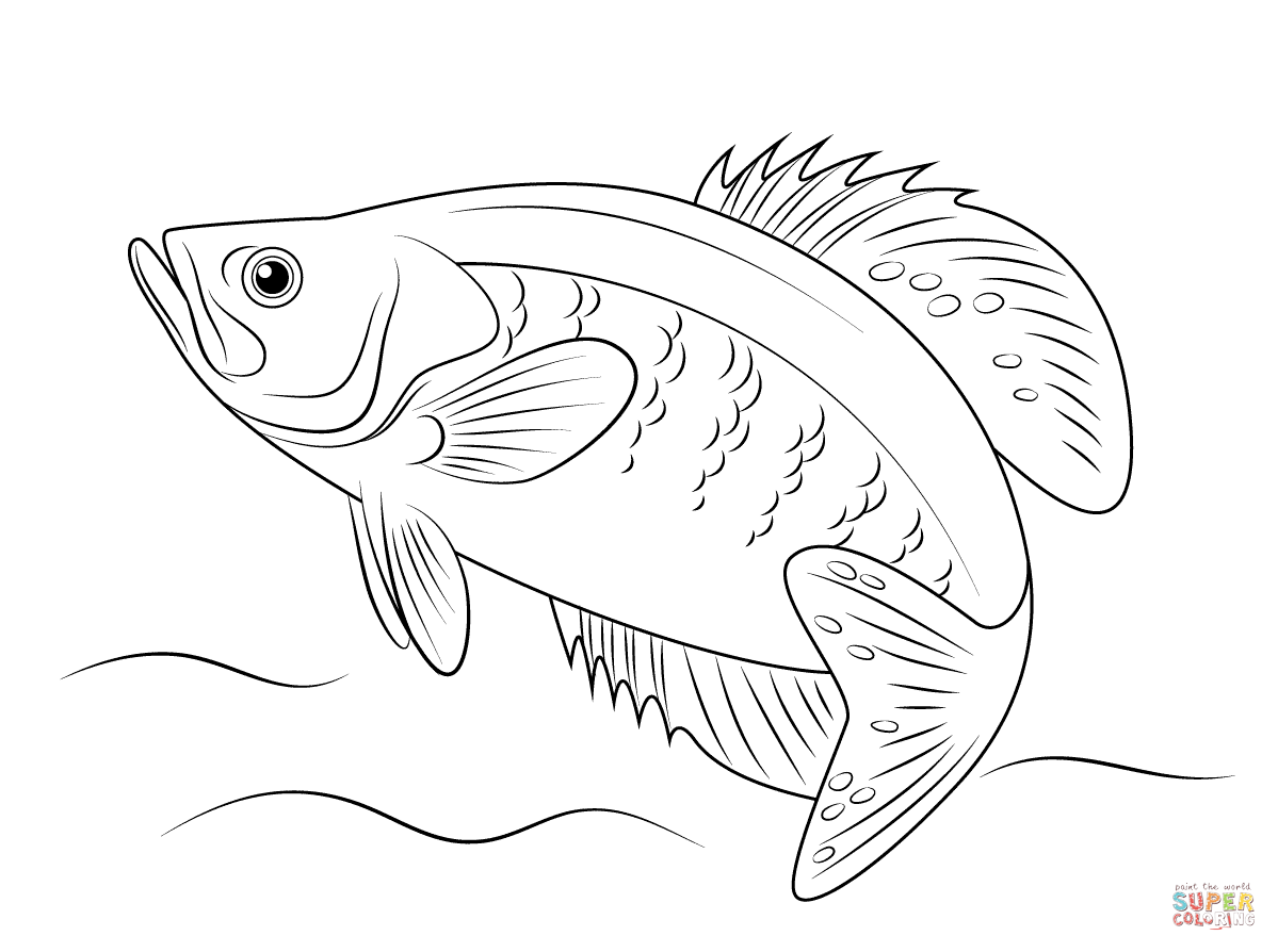 Red Fish Drawing at GetDrawings
