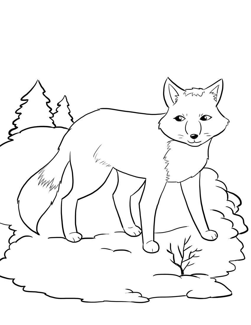 850x1100 Fox Drawing Coloring Page