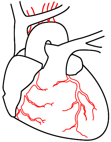 360x460 How To Draw A Heart