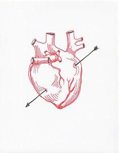 236x305 Anatomical Heart Drawing