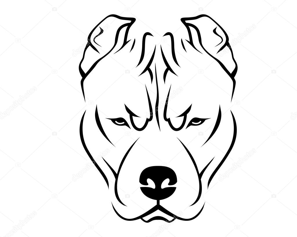 1024x819 Pit Bull Stock Vectors, Royalty Free Pit Bull Illustrations